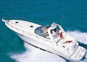 searay pic above